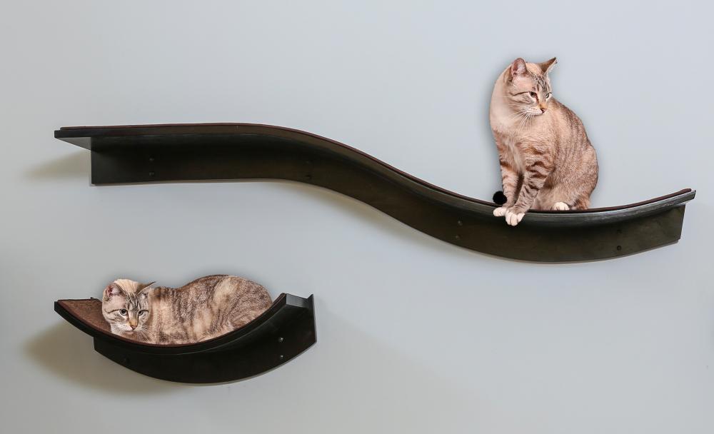 The Refined Feline Launches Latest Cat Shelves Modern