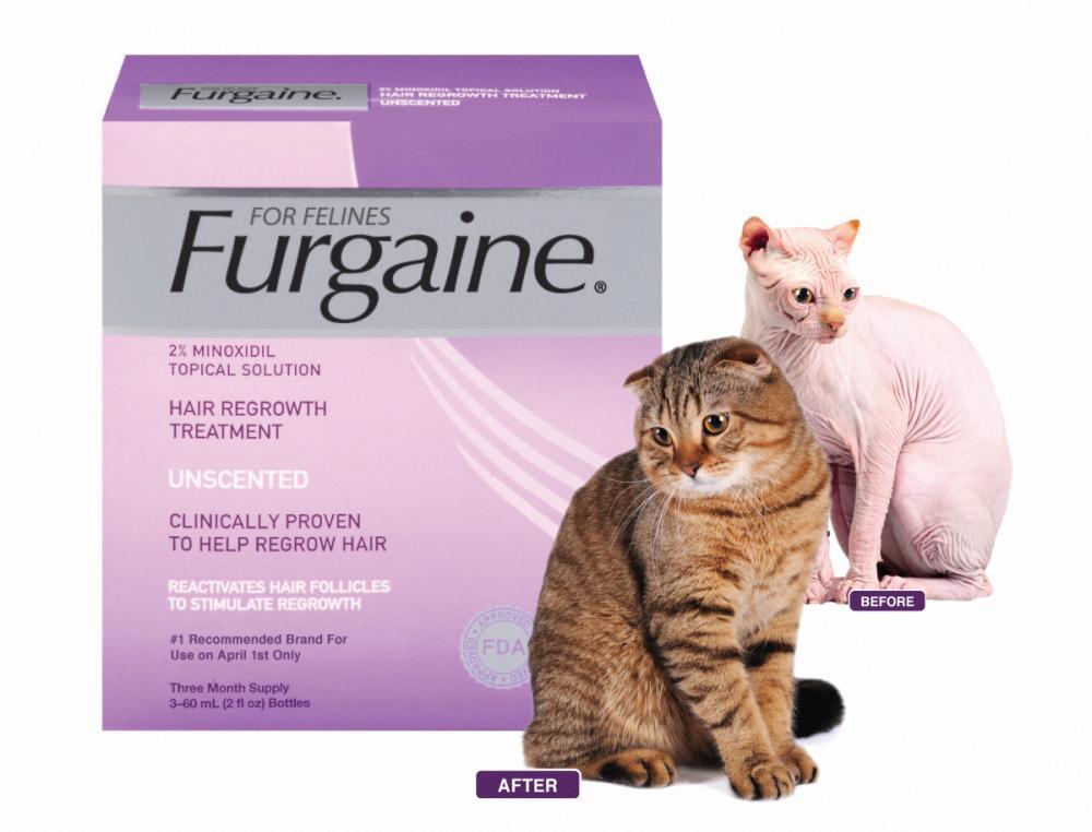Furgaine