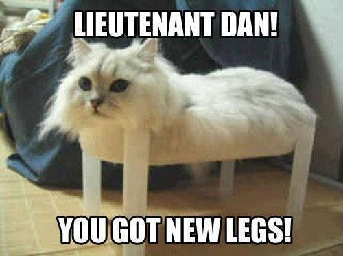 Lieutenantdan
